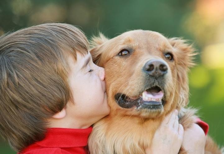 Der beste Freund des Menschen | © panthermedia.net /sonya etchison